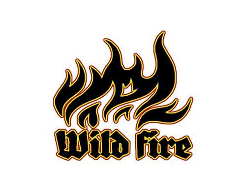 wildfire team
